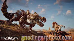 horizon zero dawn gnadingerphoto